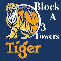 tiger_square_block_a