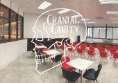Cranial Cavity